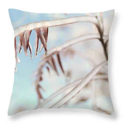 Tree Throw Pillow featuring the photograph Artistic Abstract Closeup Of Frozen Tree Branches by Oleksiy Maksymenko
