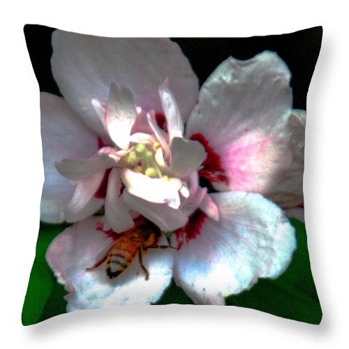 Bee Throw Pillow featuring the photograph Artistic Shades Of Light And Pollinating Bee by Optical Playground By MP Ray