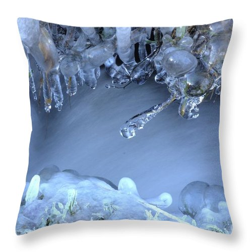 Ice Throw Pillow featuring the photograph Artistry In Ice 17 by David Birchall