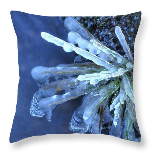 Ice Throw Pillow featuring the photograph Artistry In Ice 18 by David Birchall