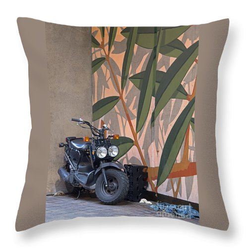 Motorcycle Throw Pillow featuring the photograph Artsy Parking Space by Ann Horn