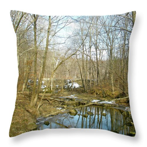 Landscape Throw Pillow featuring the photograph As Spring Begins by Mother Nature