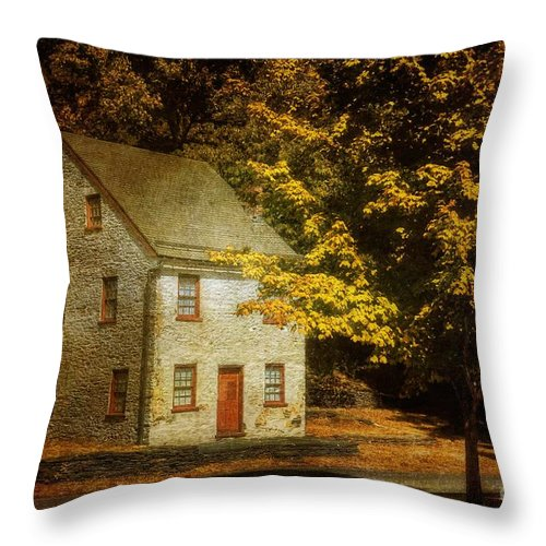 House Throw Pillow featuring the photograph As The World Passes By by Lois Bryan