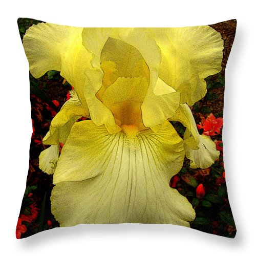 Fine Art Throw Pillow featuring the photograph Ascension by Rodney Lee Williams