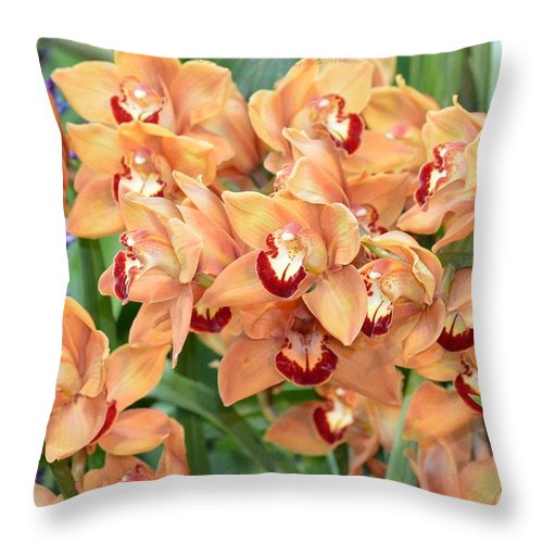 Asian Orchid Flower Throw Pillow featuring the photograph Asian Corsage Orchid by Sonali Gangane
