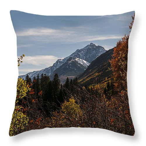 Photography Throw Pillow featuring the photograph Aspen And Mountains 1 by Lee Kirchhevel