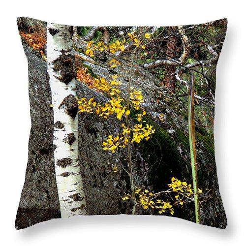 Aspen Throw Pillow featuring the photograph Aspen by Linda Cox