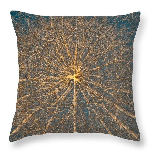Photographic Mandala Throw Pillow featuring the photograph Aspen Mandala 1 by Corinna Stoeffl