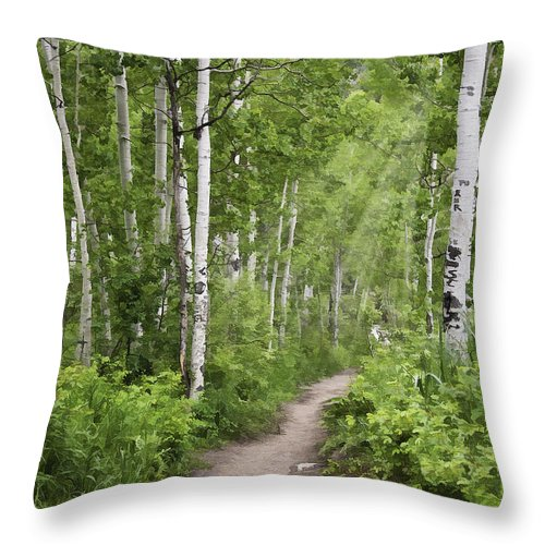 Landscape Throw Pillow featuring the photograph Aspen Path by Sharon Foster