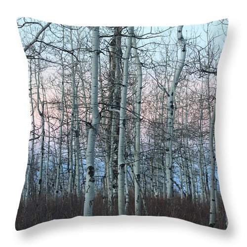 Aspens Throw Pillow featuring the photograph Aspens In Twilight by Brandi Maher