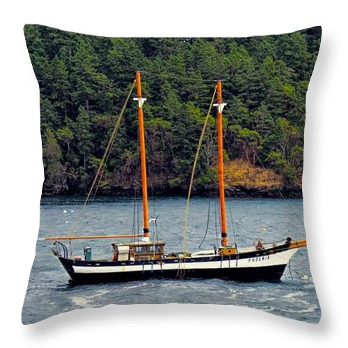 Ship Throw Pillow featuring the photograph At Anchor by Rick Lawler