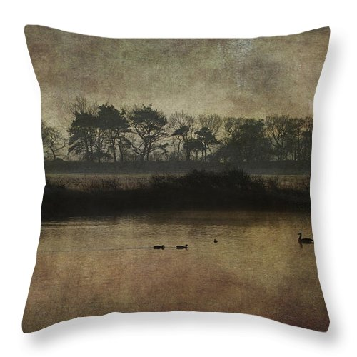 Silhouette Throw Pillow featuring the photograph At Dawn by Chris Smith