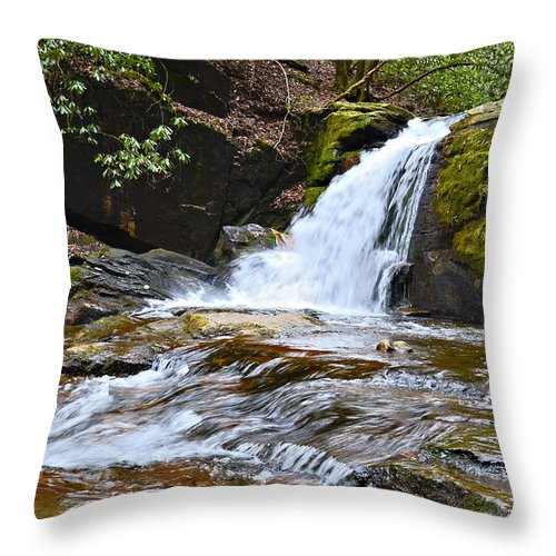 Waterfall Throw Pillow featuring the photograph At Dodd Creek by Susan Leggett
