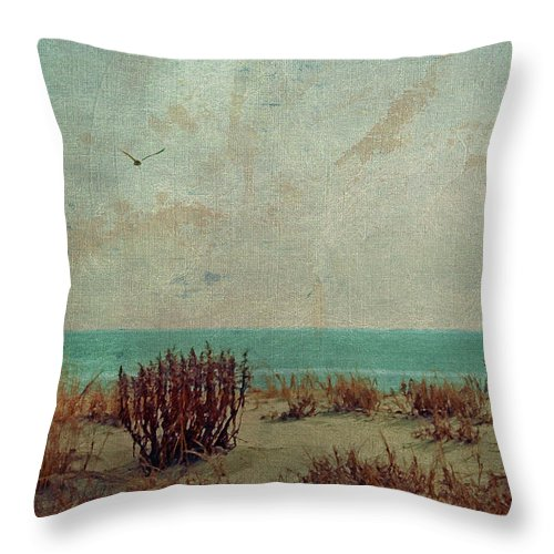 Ocean Throw Pillow featuring the photograph Atlantic City Seagull by Trish Tritz