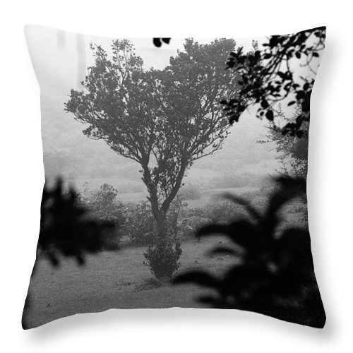Landscape Throw Pillow featuring the photograph Attached by Dattaram Gawade