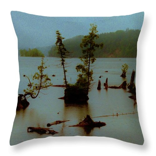 Throw Pillow featuring the photograph Au Sable X by Daniel Thompson