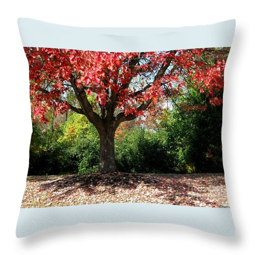Autumn Throw Pillow featuring the photograph Autumn Ablaze by Ann Horn