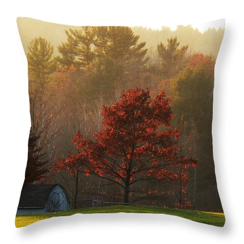 Autumn Foliage Throw Pillow featuring the photograph Autumn Ambers And Umbers by Natalie LaRocque