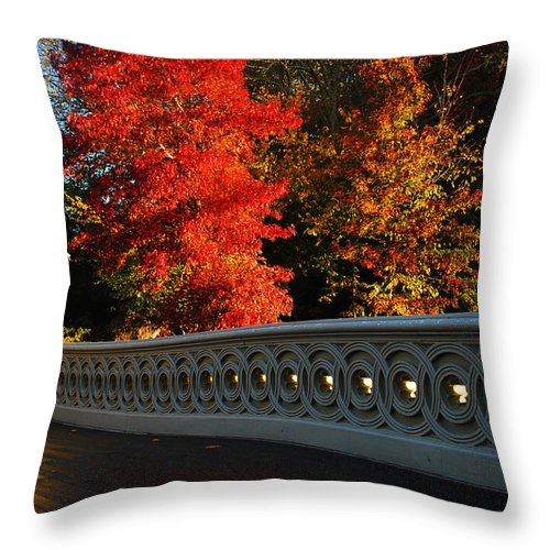 Central Throw Pillow featuring the photograph Autumn At Bow Bridge by James Kirkikis