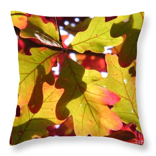 Leaves Throw Pillow featuring the photograph Autumn At Its Best by Cheryl Hardt Art