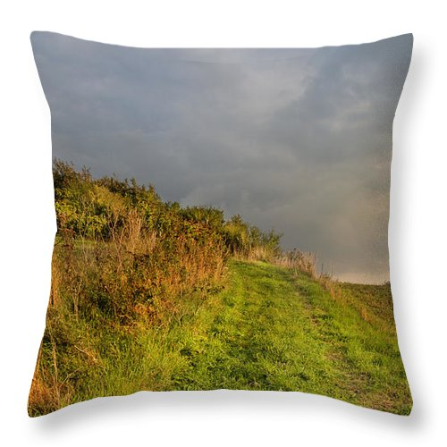 Mill Throw Pillow featuring the photograph Autumn At The Erholm Mill by Robert Lacy