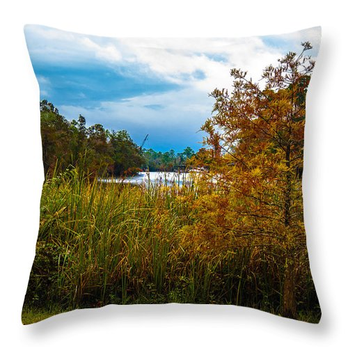 Autumn Throw Pillow featuring the photograph Autumn At The River by Jon Cody