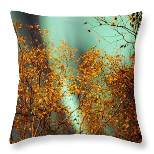 Norway Throw Pillow featuring the photograph Autumn Aurora by David Broome
