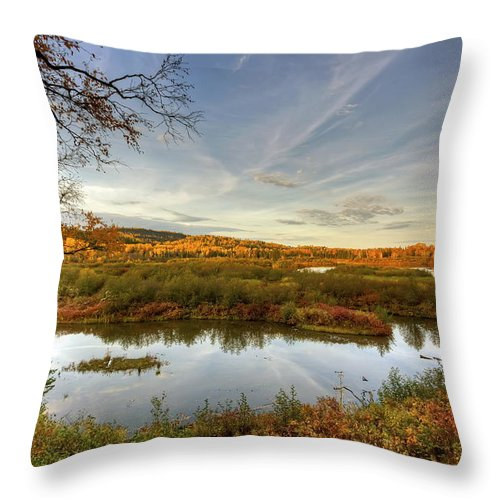 Pigeon River Throw Pillow featuring the photograph Autumn Borders by Bryan Benson