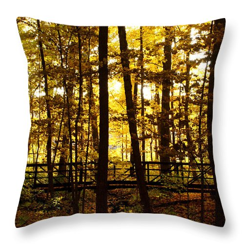 Autumnal Throw Pillow featuring the photograph Autumn Bridge I by Valerie Fuqua