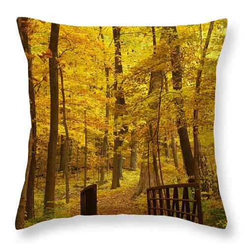 Leaves Throw Pillow featuring the photograph Autumn Bridge IIi by Valerie Fuqua