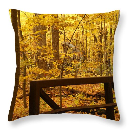 Autumn Throw Pillow featuring the photograph Autumn Bridge Iv by Valerie Fuqua