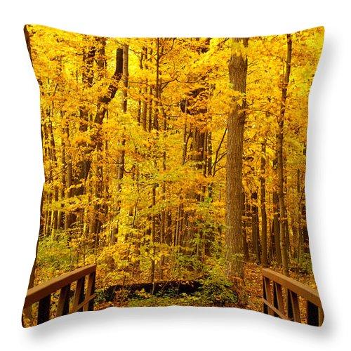 Autumn Throw Pillow featuring the photograph Autumn Bridge V by Valerie Fuqua