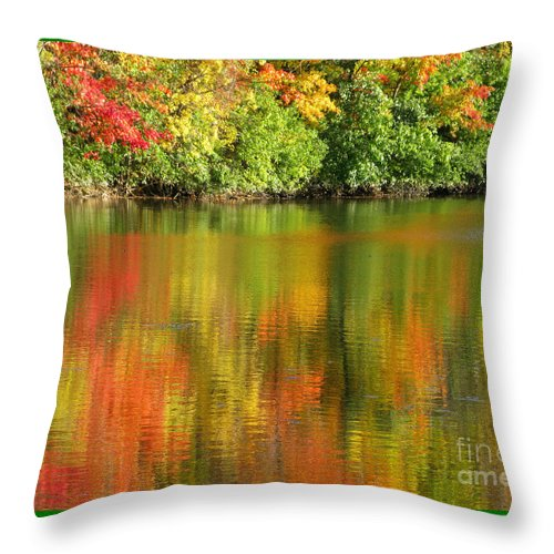 Autumn Throw Pillow featuring the photograph Autumn Brilliance by Ann Horn