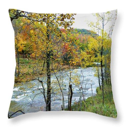 Autumn Throw Pillow featuring the photograph Autumn By The River by Deborah Benoit