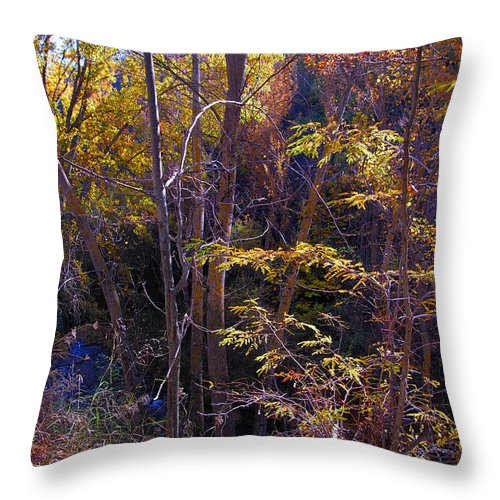 Fall Throw Pillow featuring the photograph Autumn Colors by Guido Montanes Castillo