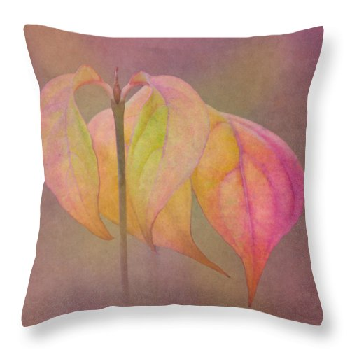 Dogwood Throw Pillow featuring the photograph Autumn Dogwood 2 by Angie Vogel