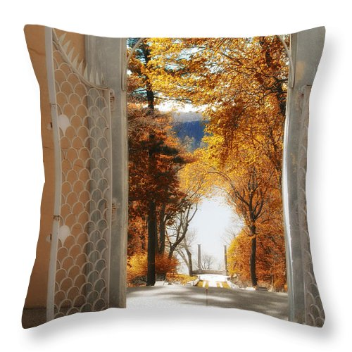 View Throw Pillow featuring the photograph Autumn Entrance by Jessica Jenney