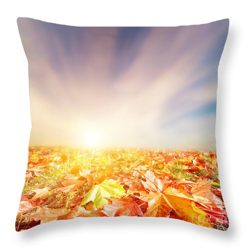 Autumn Throw Pillow featuring the photograph Autumn Fall Landscape by Michal Bednarek