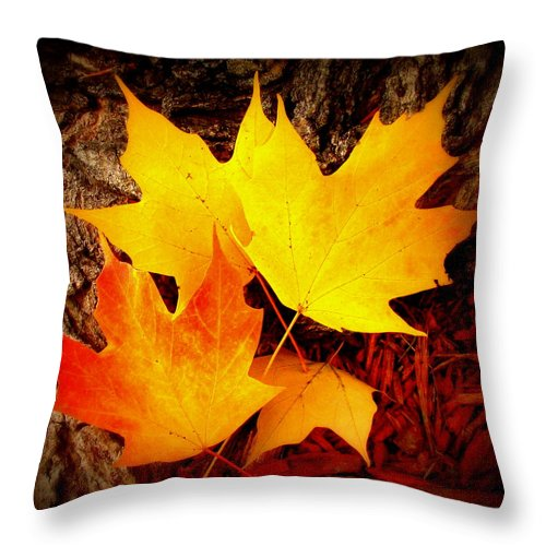 Fine Art Throw Pillow featuring the photograph Autumn Fire by Rodney Lee Williams