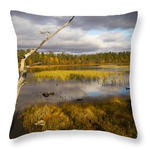 Country Throw Pillow featuring the photograph Autumn In Finland Near Inari by Heiko Koehrer-Wagner