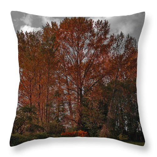 Mount Vernon Washington Throw Pillow featuring the photograph Autumn In Mt Vernon by David Patterson
