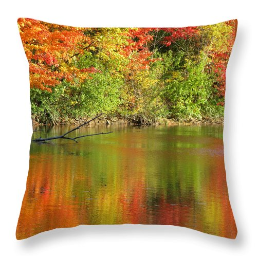 Autumn Throw Pillow featuring the photograph Autumn Iridescence by Ann Horn