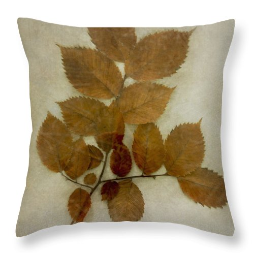 Leaves Throw Pillow featuring the photograph Autumn Leaves by Margie Hurwich