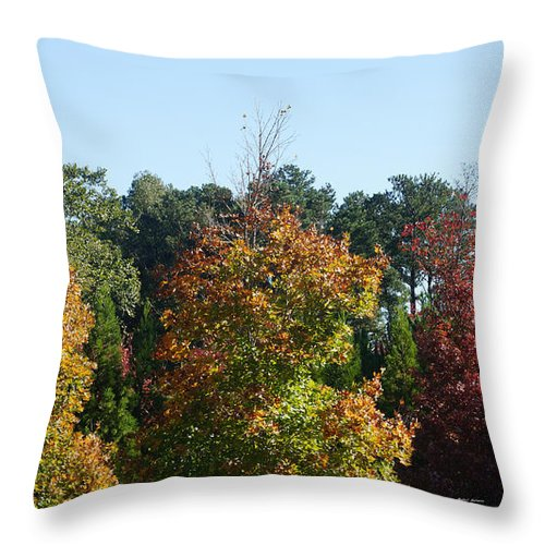 Autumn Leaves Throw Pillow featuring the photograph Autumn Leaves by Rafael Salazar