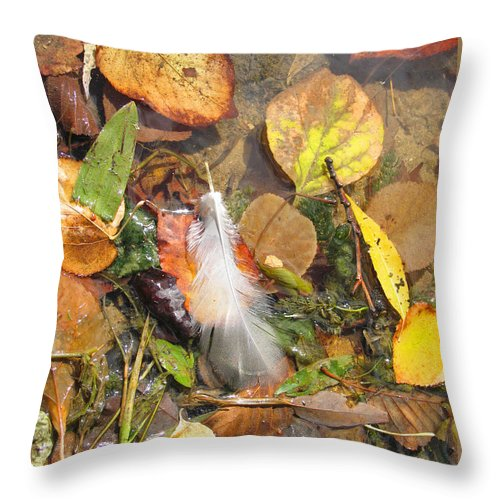 Autumn Throw Pillow featuring the photograph Autumn Leavings by Ann Horn