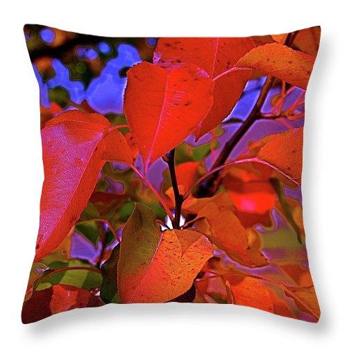 Autumn Throw Pillow featuring the photograph Autumn Magic 1 by First Star Art