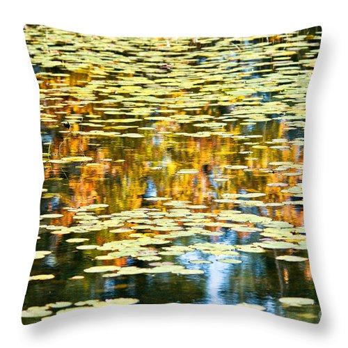 Throw Pillow featuring the photograph Autumn Marsh by Cheryl Baxter
