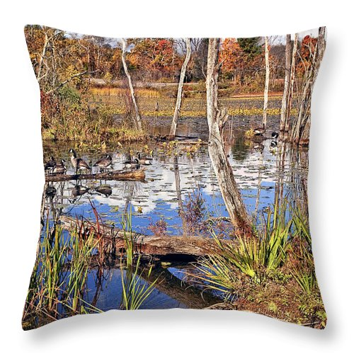 Landscape Throw Pillow featuring the photograph Autumn Morning At The Marsh by Marcia Colelli