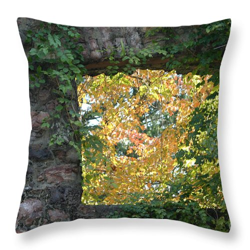 Autumn Throw Pillow featuring the photograph Autumn Naturally Framed by Living Color Photography Lorraine Lynch