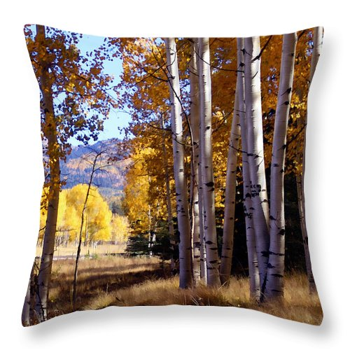 Trees Throw Pillow featuring the photograph Autumn Paint Chama New Mexico by Kurt Van Wagner